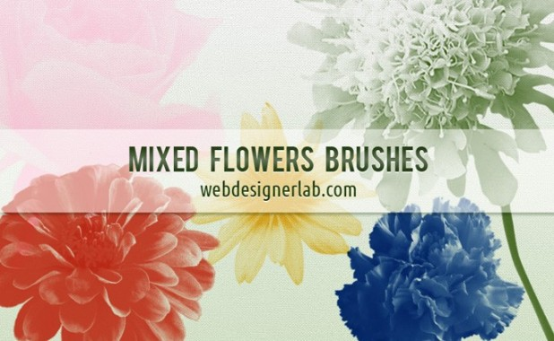 Mixed Flowers Brushes